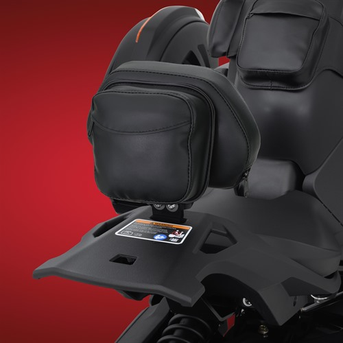 Backrest on Ryker With Max Mount (Back View)